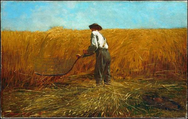 霍默,《老兵新田》,1865,布面油画,61.3 x 96.8 cm,纽约大都会美术馆