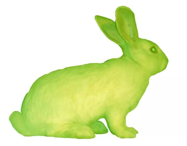 [美] 爱德华多·卡茨,《绿色荧光蛋白兔》(2000)