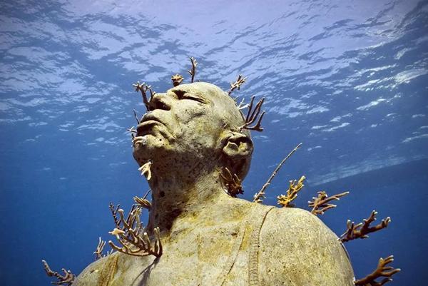 生态艺术家在水下建的博物馆,被《国家地理》列为了世界奇观