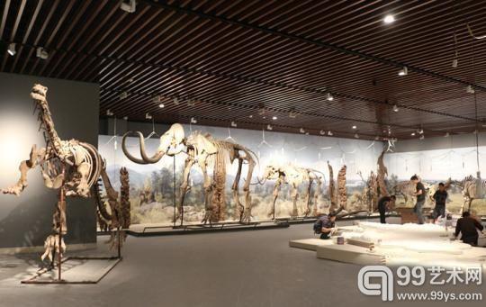 博物院里即将完工的远古印象展厅